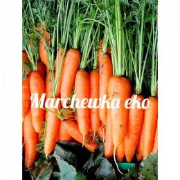 Ekologiczna marchew