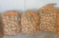 Ziemniaki eko