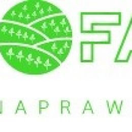 Gospodarstwo Ekologiczne Barbary i Marcina Olejarz/Firma Handlowo Usługowa EkoFarm Barbara Olejarz