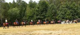 Nauka jazdy na koniu