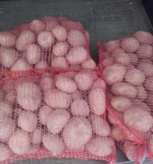 Ziemniaki  Jurek