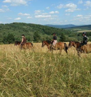 Jazdy na przyjaznych koniach huculskich