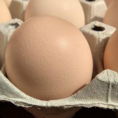 Świeże jajka kurze. Wiejskie z wolnego wybiegu.