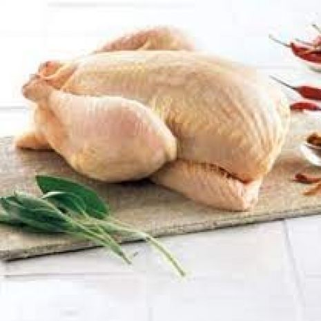 Tuszka kurczaka brojler