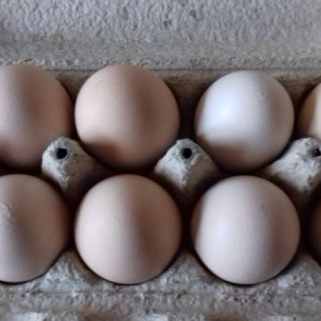 Jajka wiejskie 10szt