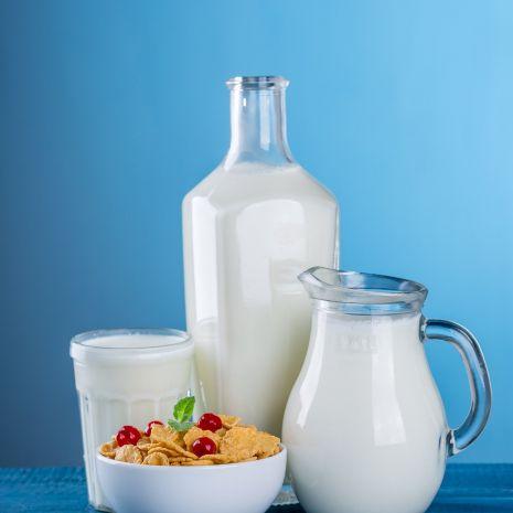 mleko, ser, masło, śmietana