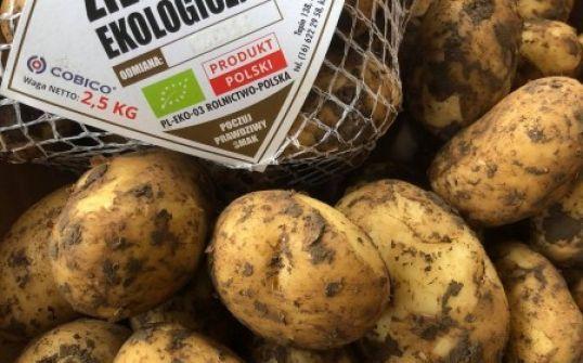 Ekologiczne Ziemniaki