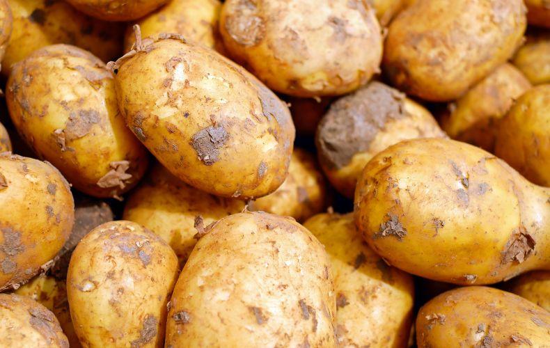 Ziemniaki sortowane