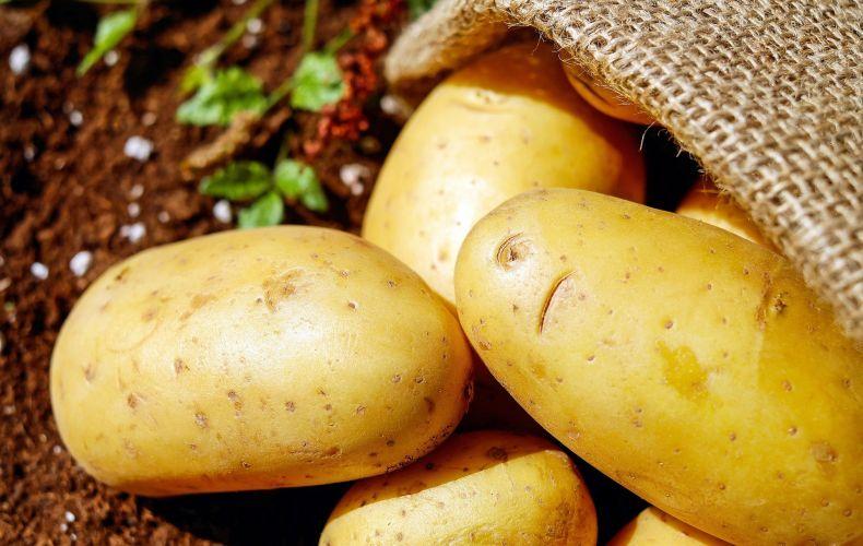 Ziemniaki Corinna